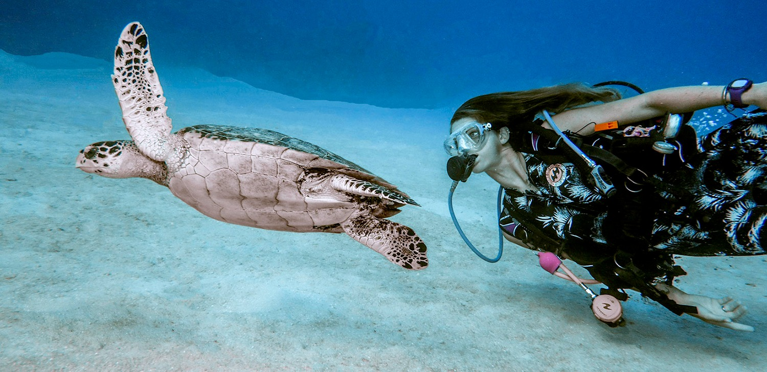 Top 4 Reasons Why We Love Scuba Diving