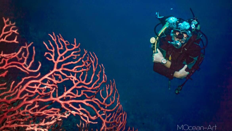 Meet Paul, the New Owner of Pro Dive Roatan