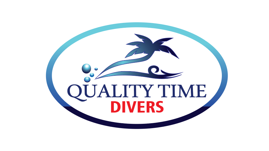 quality time divers logo